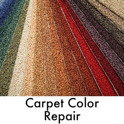 Carpet color Repair