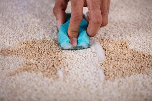Carpet Color Repair